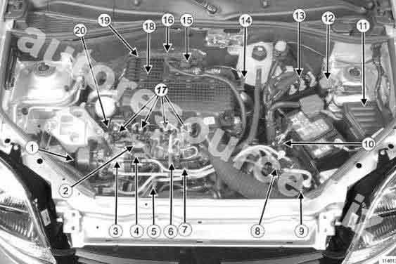 1. Датчик положения распределительного вала Renault Kangoo.  2. Датчик температуры топлива.  3. ТНВД.